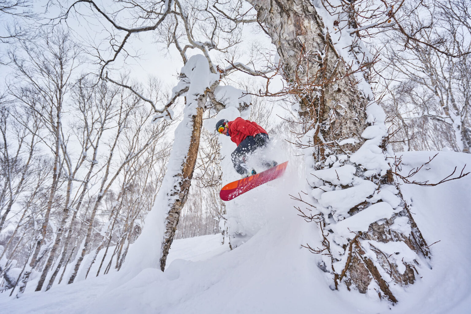 Ben catching some air through the trees covered in Japan's powder snow at Rotsuko, Japan