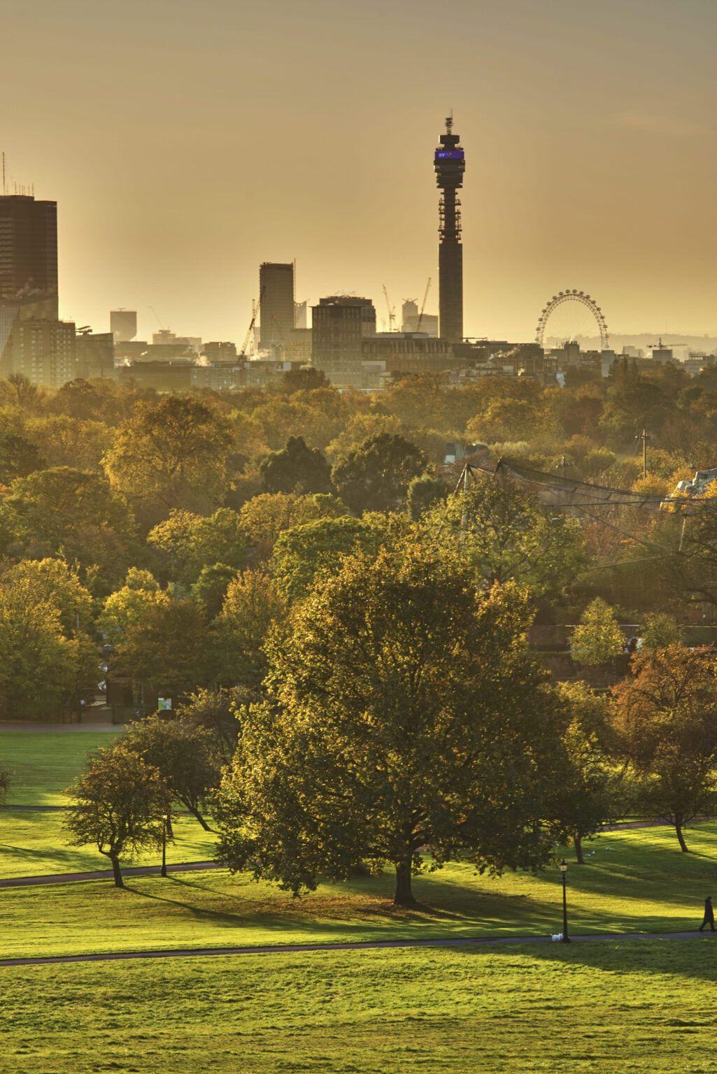 London Eye and BT Tower seen sunrise from Primrose Hill