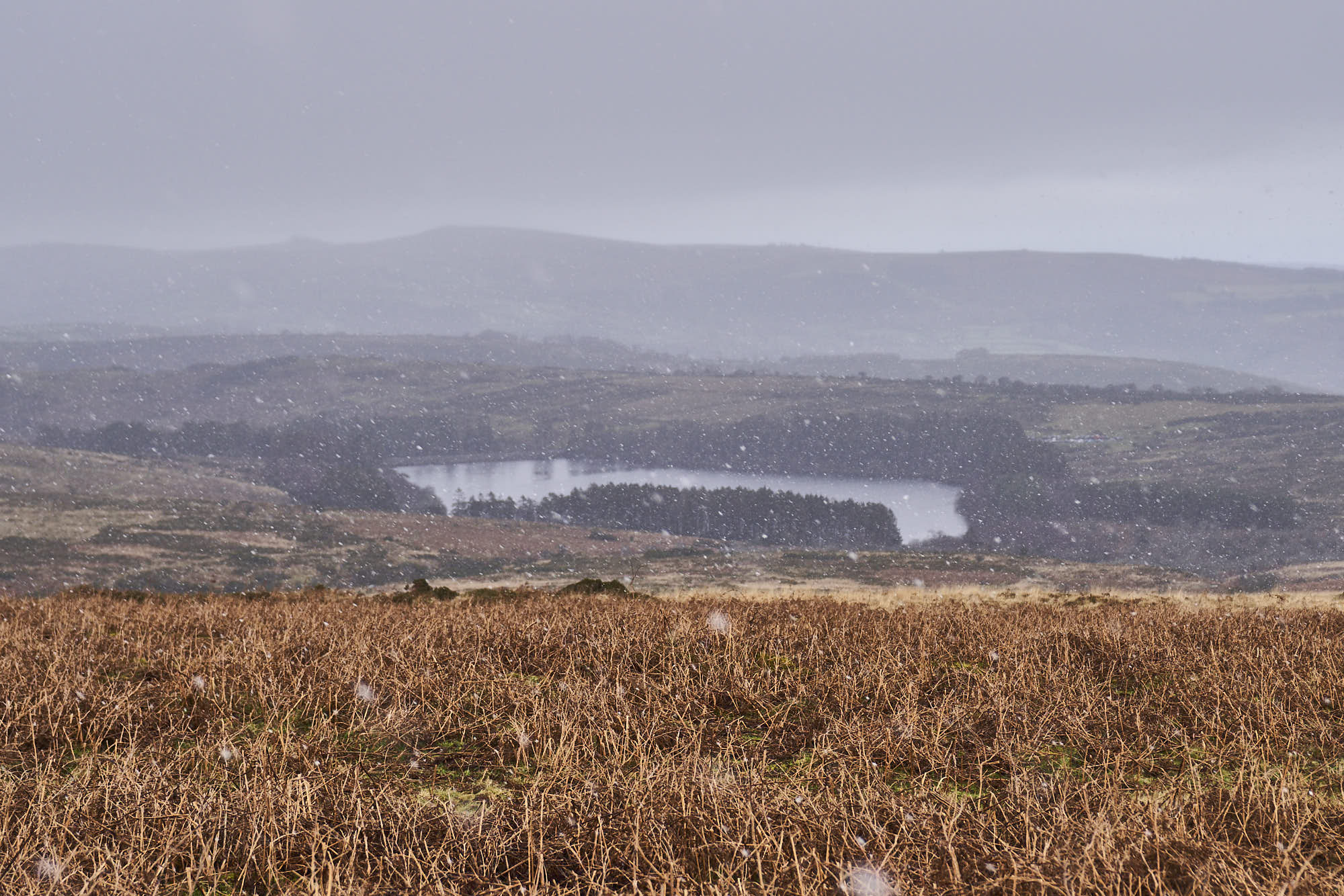 Snow falling on Venford Reservoir, Dartmoor shot by Matt Ray reviewing the Patagonia Fitz Roy Down